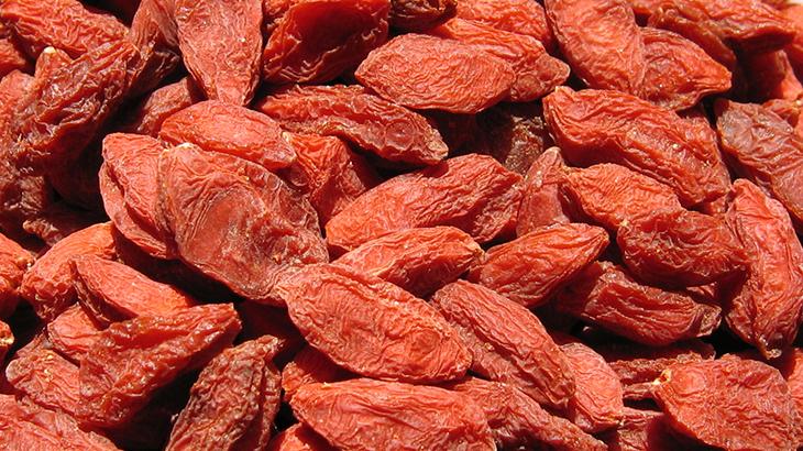 fructe goji