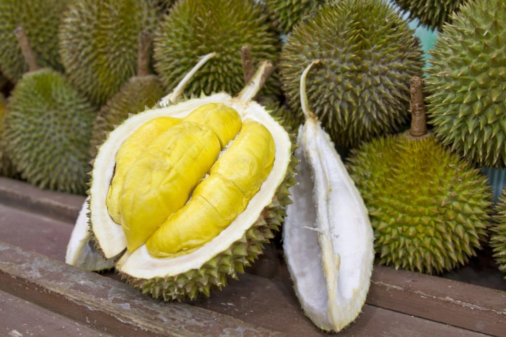 durian beneficii