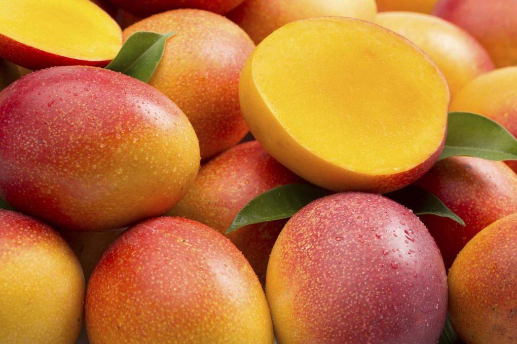 mango fruct